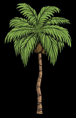 Tree/Palm Tree