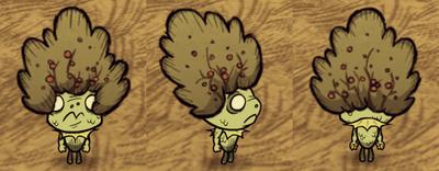 Bush Hat Wurt