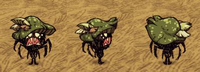 Green Funcap Webber