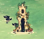 在海豚宫殿附近的几只瓶鼻海豚