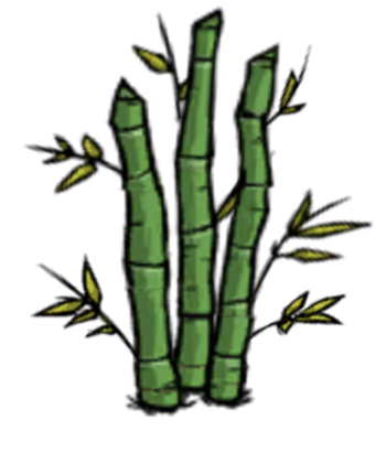 Bamboo Patch