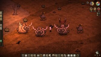 Beefalo Tendencies-0