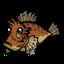 Dandy Lionfish