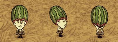 Fashion Melon Winona