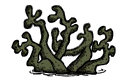 Cave Lichen old