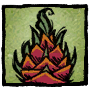 Dragonfruit Profile Icon