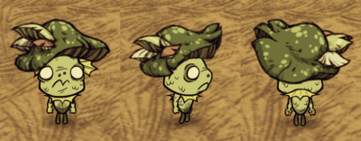 Green Funcap Wurt