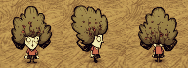 File:Bush Hat Willow.png