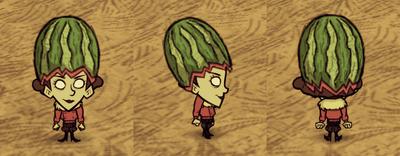 Fashion Melon Wheeler