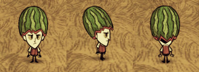 Fashion Melon Wilson