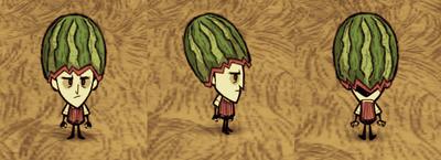 Fashion Melon Wilson