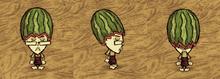 Fashion Melon Wickerbottom