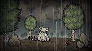 Waschbär Trailer