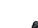 Baum/Lausiger Immergrün