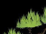 Baum/Dschungelbaum