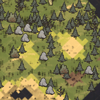 Мозаичный биом на карте