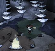 Срубленное синее грибное дерево