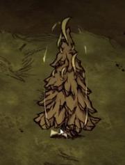 Камень и дерево