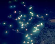 Rainbow Jellyfish Migration Volcano