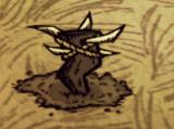 Клыкастая ловушка