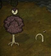 Энт, убивший птицу
