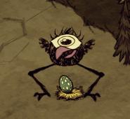 Птица высиживает яйцо