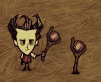 Dontstarve steam 2013-07-06 15-19-22-668