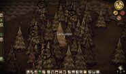 Multiple Treeguards