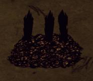 Сгорела хорошая грядка
