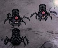 Araignée des caves