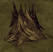Кучка деревьев