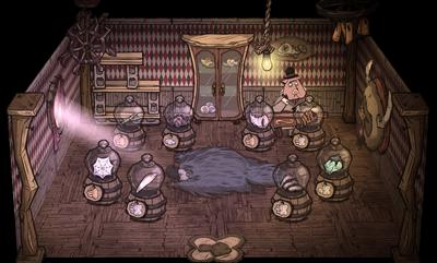 Магазин редкостей внутри
