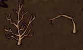 Pousses d'arbre (Récoltable Récolté)InGame
