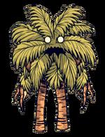 Palmier gardien