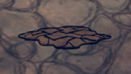 Dragoon salive seche
