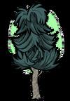 Среднее чайное дерево