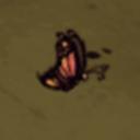 Butterfly128-1-