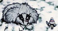 Blairours hibernation