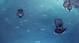 Баг с кабаном, который ходит по воде;
