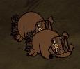 Спящая свинья-страж