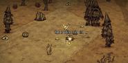 Desert treeguards