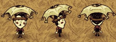 Eyebrella Wes