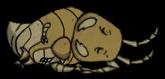 Муравей спит