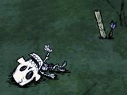 Squelette sarbacane