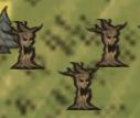 Совершенно нормальные деревья на крате