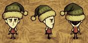 Wilson wearing winterhat stocking cap green forest