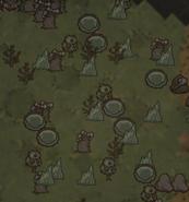 Горячие источники на карте