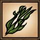 Seaweed Set