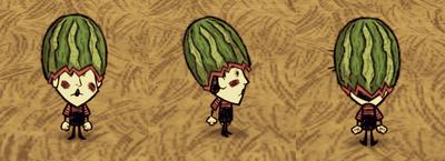 Fashion Melon Wes
