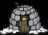 Camp de morses